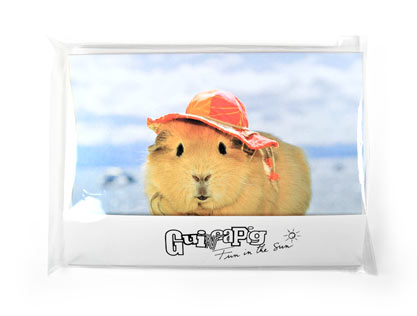 Fun in the Sun guinea pig notecards